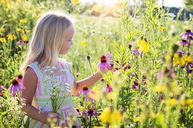 holčička na louce - Místo anglického trávníku květinová louka?