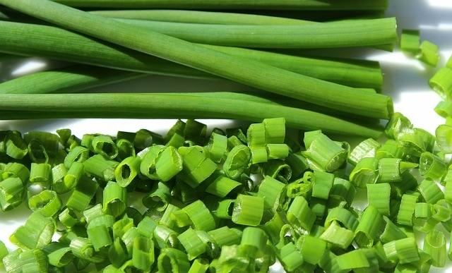 pažitka - Vypěstujte si pažitku ze semínek