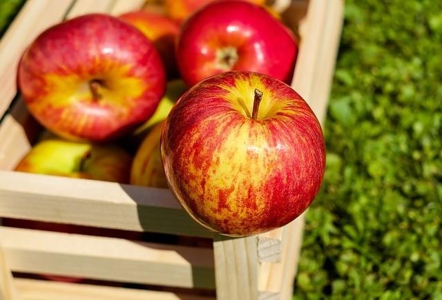 jablka v bedně - Až se zima zeptá aneb práce na podzim kolem domu a na zahradě