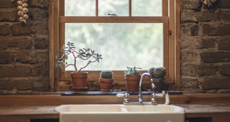 rostliny v kuchyni