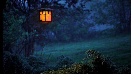 zahrada osvětlení