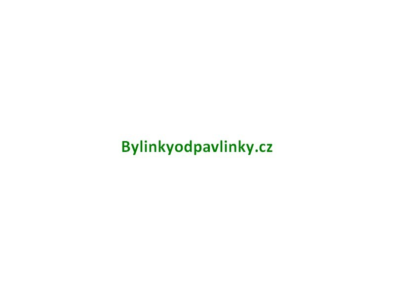 bylinkyodpavlinky.cz  - Katalog podniků