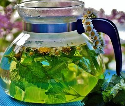 macerát - Období ve znamení bylinného šálku čaje. Nálev, odvar či macerát?