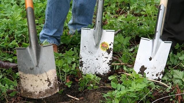 motorika - Zahradničení pro rozvoj motoriky. Zdravý doplněk životního stylu
