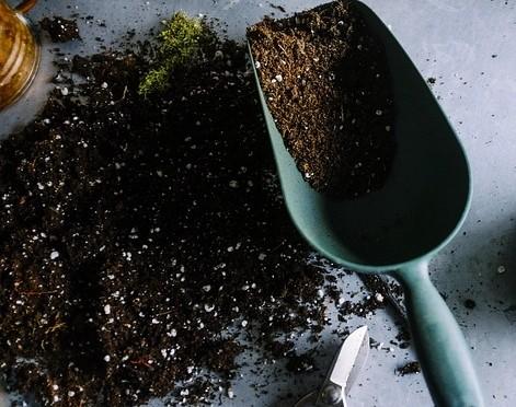 půda - Půdní druhy – jaké rozeznáváme, a pro které rostliny se hodí