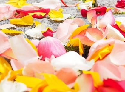 parfém - Jak si připravit domácí parfém z květin?