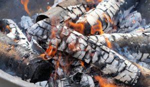 popel hnojení t 300x174 - Popel ze dřeva je výborné hnojivo. Co obsahuje a jak jej aplikovat?