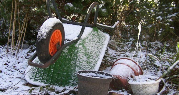 prace na zahrade v zime t