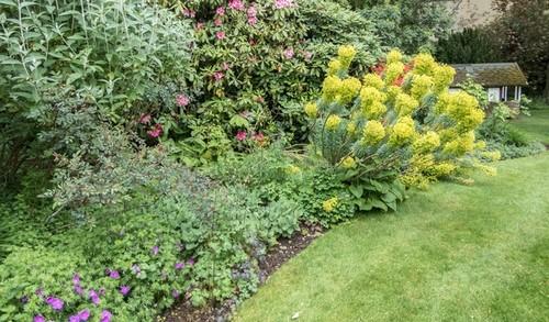 svazita zahrada - Jak zpevnit svah? Osaďte ho dřevinami.