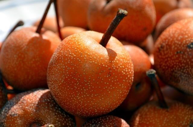 hruska nashi - Podlehli jste chuti nashi? Asijskou hrušeň můžete pěstovat na své zahradě
