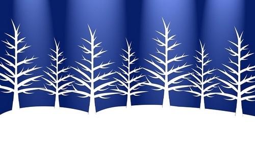 obraz - Venkovní vánoční dekorace. Jaká může být ve vaší zahradě