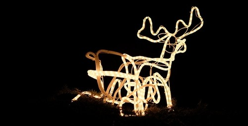 vánoce dekorace - Venkovní vánoční dekorace. Jaká může být ve vaší zahradě