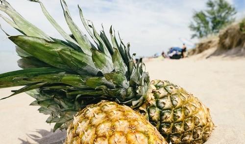 ananas 1 - Ananas: Působí protizánětlivě a pomáhá odplavovat škodliviny z těla