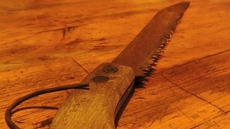 pila - Předjaří ve znamení prořezávání stromků a keřů. Jak na to a na co si dát pozor?