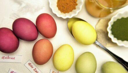 barvení vajíček 440x250 - sazenicka.cz