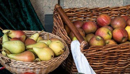 jablka hrušky