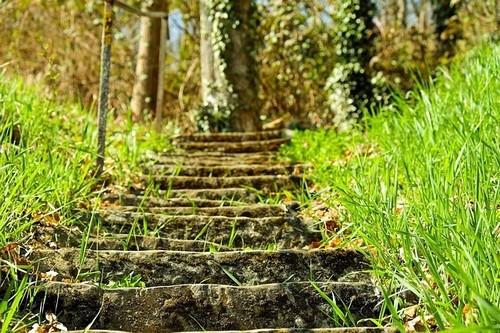 schody - Jak si vytvořit na zahradě schody, které budou estetické i účelné zároveň