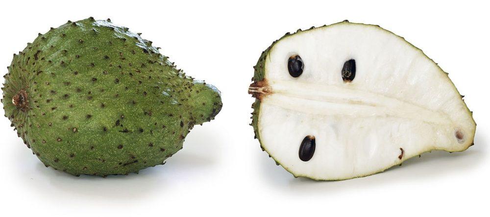 Annona muricata - Anona ostnitá neboli láhevník s chutnými plody pro mlsné jazyky