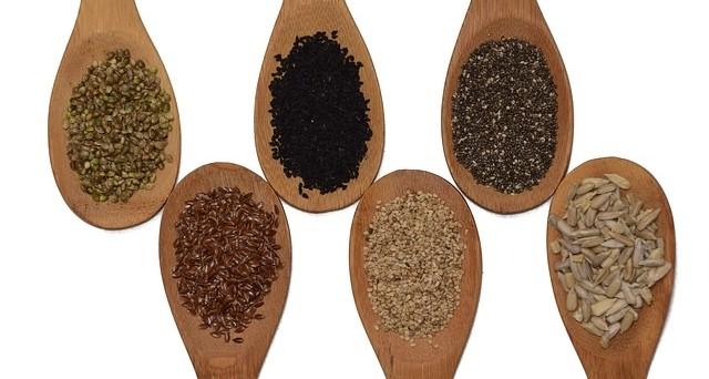 semena - Co všechno může být koření? Některá fakta vás možná překvapí
