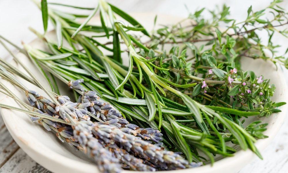 byliny diuretika - Léčivé rostliny s diuretickým účinkem. Pomáhají vylučovat tekutinu ztěla