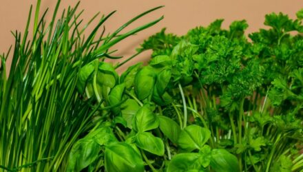 bylinky kuchyne