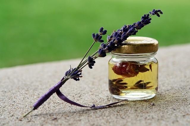 levandule olej - Pravý levandulový olej není fialový a nesmí ho užívat každý desátý Čech
