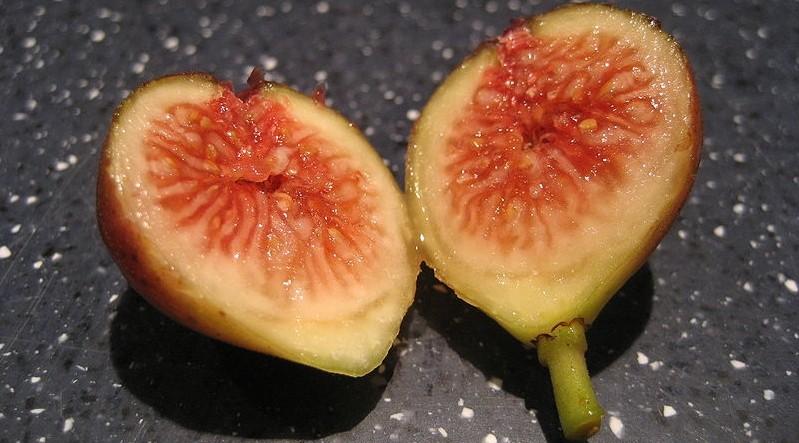 fiky - Pěstování fíkovníku na zahradě, v květináči či jako bonsaj. Jak na to
