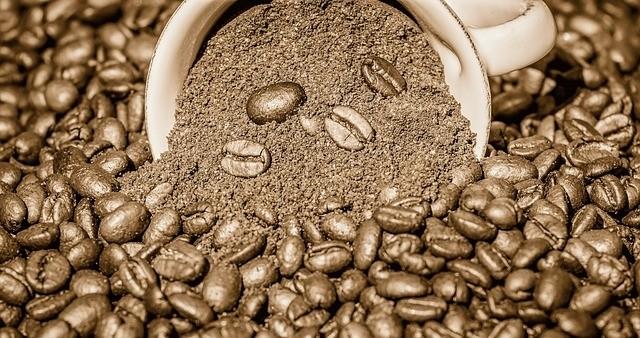 kafe - Hnojení kávovou sedlinou: Kde se nehodí a kde naopak nahradí to průmyslové