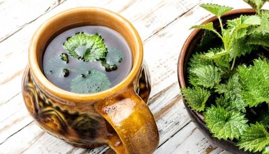 caj z kopriv - Recepty z kopřivy pro zdraví, krásu i zpestření jídelníčku