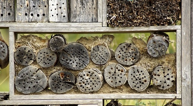 domov pro hmyz - Jak na jaře přilákat hmyz do zahrady a hlavně jak si ho udržet