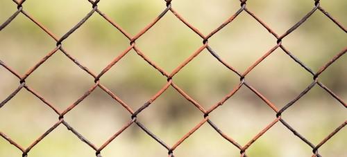 drateny plot - Řešíte plot kolem pozemku? Jaké jsou možnosti