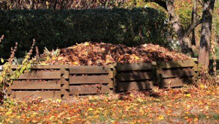 kompost 440x250 - sazenicka.cz