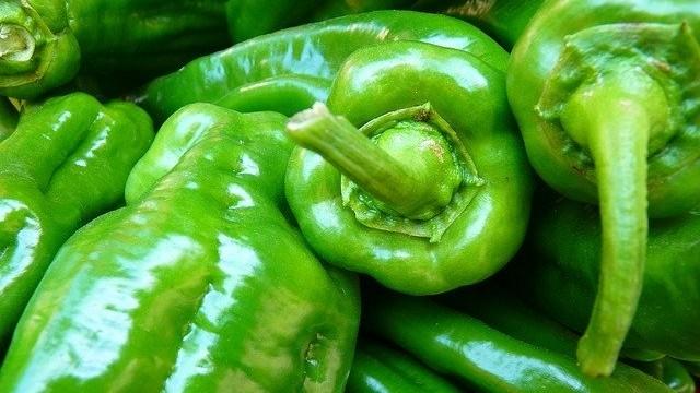 zelene papriky - Správný březnový výsev paprik může předejít mnoha pěstitelským obtížím