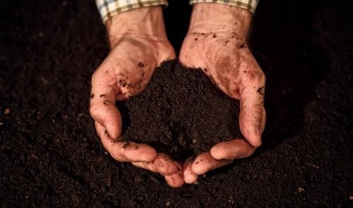 zemina - V hlavní roli kompostér: Na co často zapomínáme