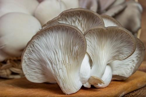 hliva ustricna - Hlíva, shiitake a enoki: 3 houby, které skvěle chutnají, ale zároveň i léčí