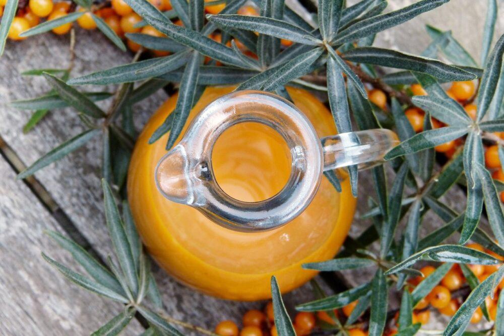rakytnik - Jak zpracovat podzimní plody a zajistit si zásobárnu vitamínů na zimu