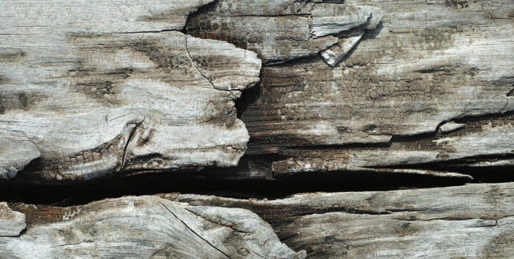 drevo - Starý nátěr lze odstranit i teplem, ne vždy je to ale vhodné