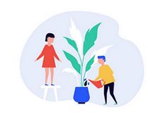pestovani interier - Pěstování dle místa