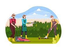 pestovani zahrada - Pěstování dle místa