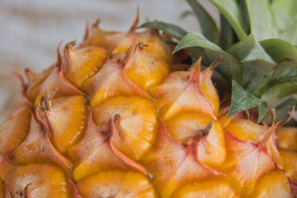 ananas 600x400 - Už se nemůžete dočkat zavařovací sezóny? Vyzkoušejte náš báječně exotický kompot z ananasu