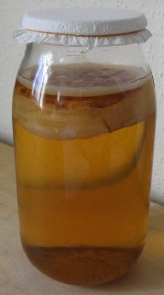 kombucha 334x600 - Kombucha: Zázračný nápoj, jak si ho vyrobit doma