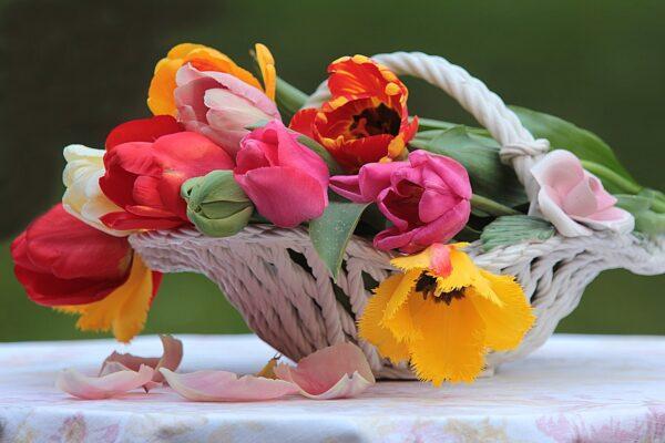 kvetiny 600x400 - Vykouzlete si doma svěží atmosféru s jarními květinami v košíku