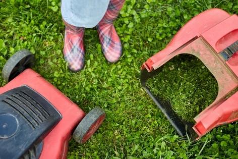 sekacky - Poslední sekání trávníku na podzim